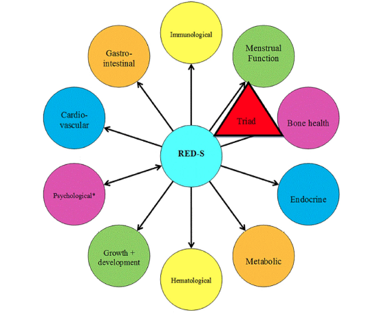 Relative Energy Deficiency in Sports (RED-S)