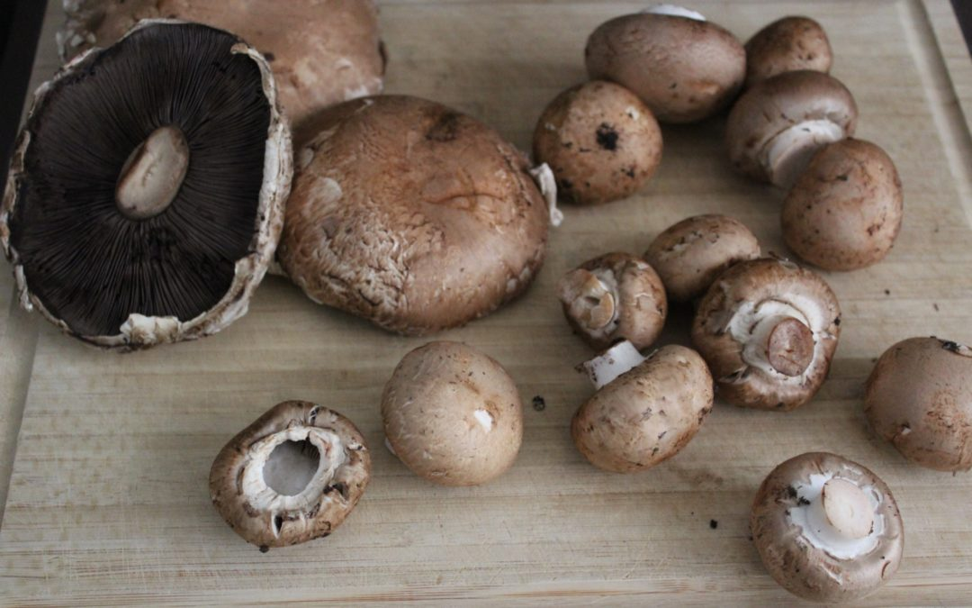 3 Recipes That Will Change The Way You Think About Mushrooms